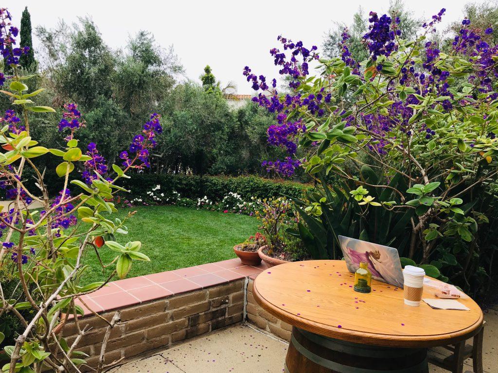 "My ""office"" in La Jolla, CA"